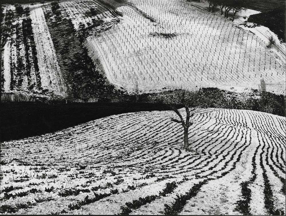 MARIO GIACOMELLI Paesaggio 283, 1968