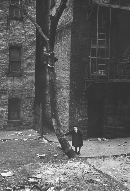 HELEN LEVITT,  Untitled (Masks in Tree), New York City,  c. 1940