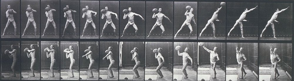 EADWEARD MUYBRIDGE, Animal Locomotion, Plate 319 (Man Throwing a Medicine Ball), 1887