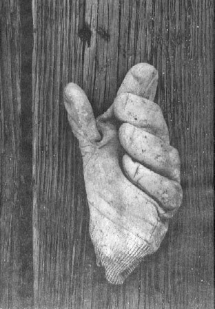 AARON SISKIND,Gloucester I H (Glove), 1944