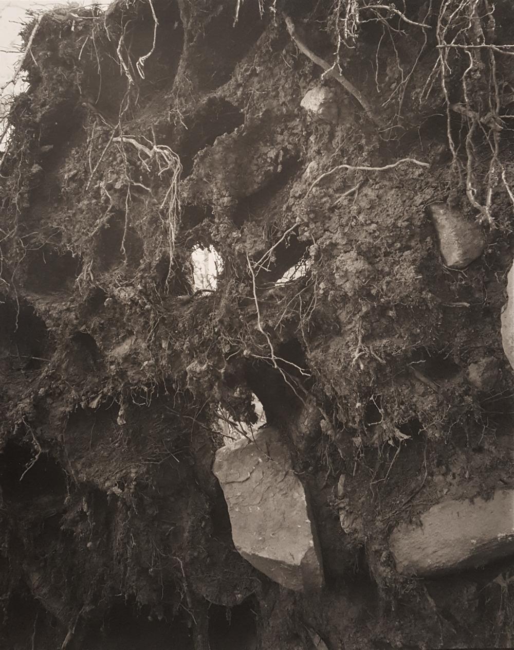 JOHN YANG,  Long Pond Preserve ,  Waccabuc, New York,  1980