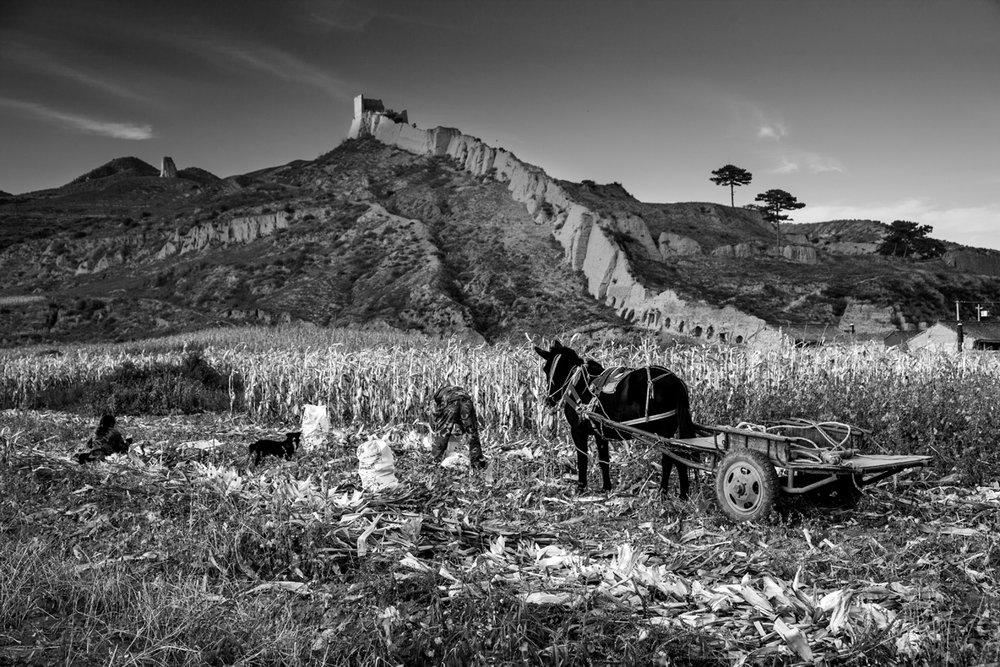 YANG YUELUAN,  Hebei Chicheng,  September 30, 2010