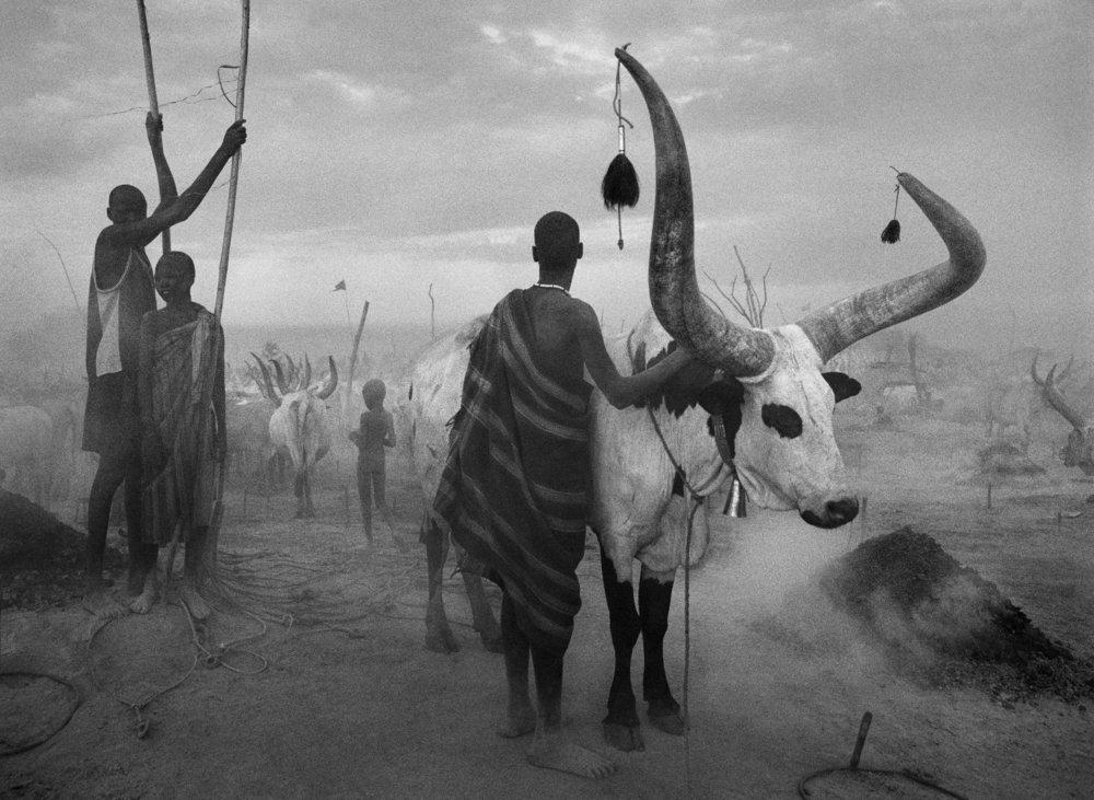 SEBASTIAO SALGADO,  Dinka Group at Pagarau Cattle Camp, Southern Sudan,  2006