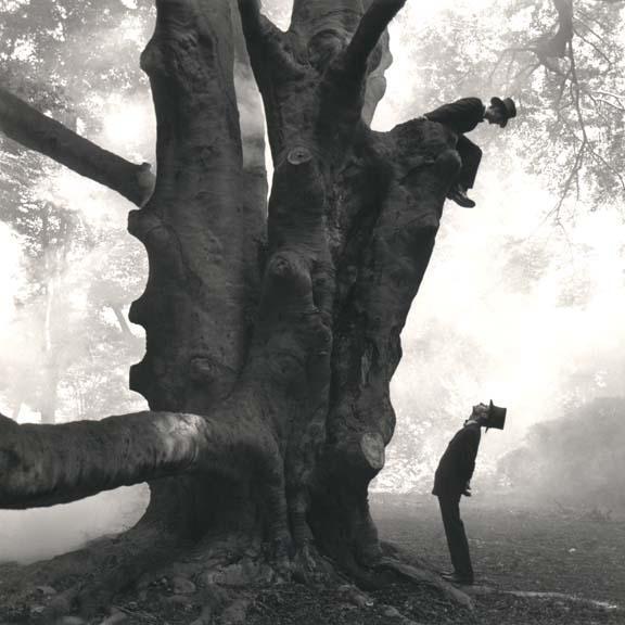 RODNEY SMITH,  Twins in Tree ,  Snedens Landing, New York,  1999