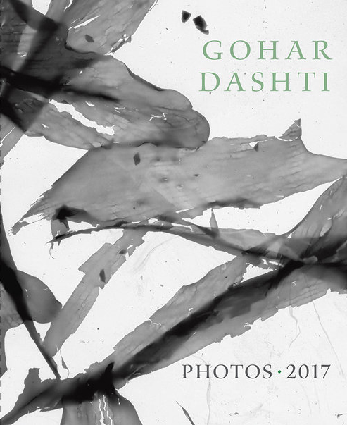 Gohar_Dashti_Book_Cover_Stinehour.jpg