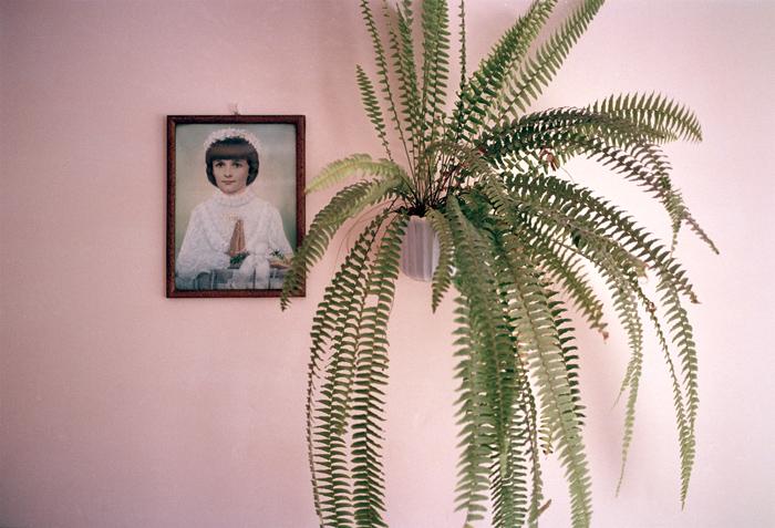 JESSICA BACKHAUS,  Pink Beata  ( Jesus and the Cherries),  2004