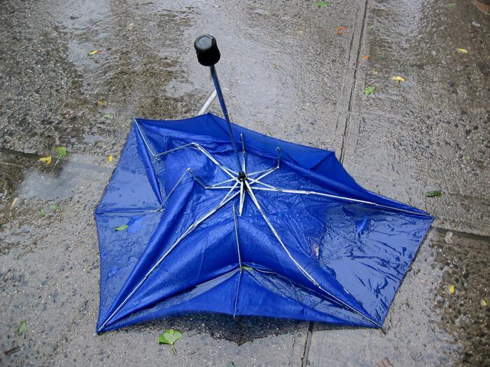 JESSICA BACKHAUS,  Blue Umbrella   (What Still Remains) , 2006