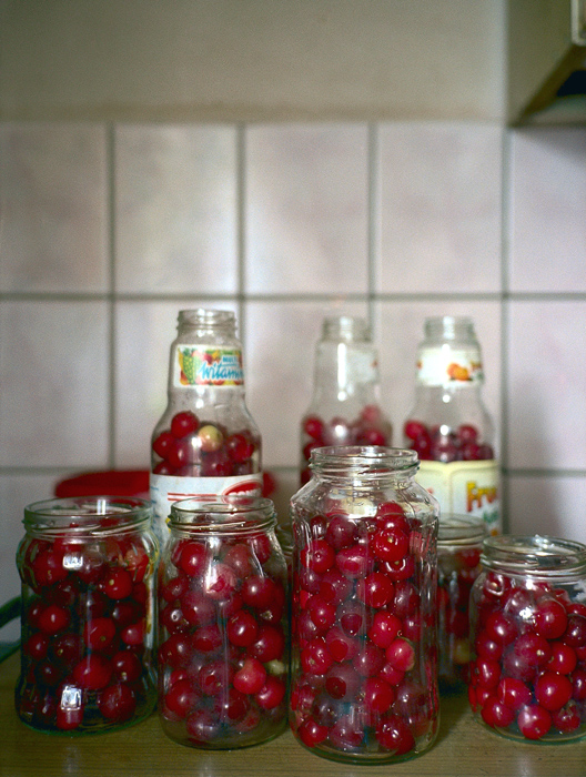 JESSICA BACKHAUS,  Cherries   (One Day in November) , 2002