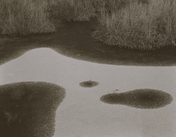 KOICHIRO KURITA,  Big Bird, Boundary Water, Minnesota,  1998