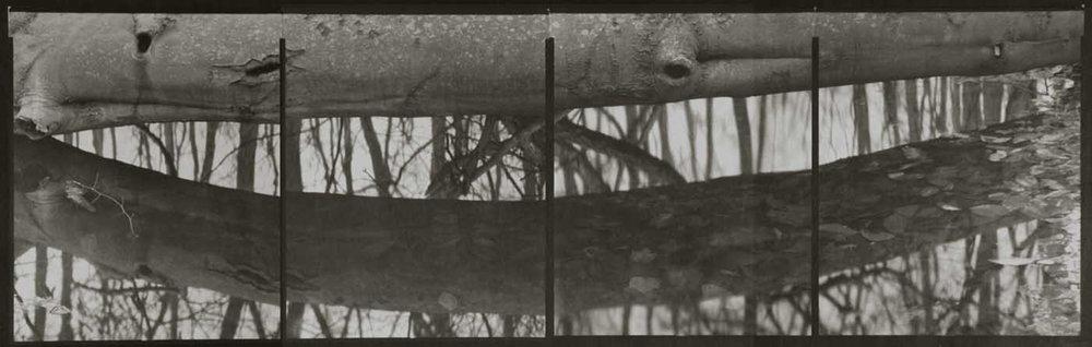 Koichiro Kurita,  Vernal Pond