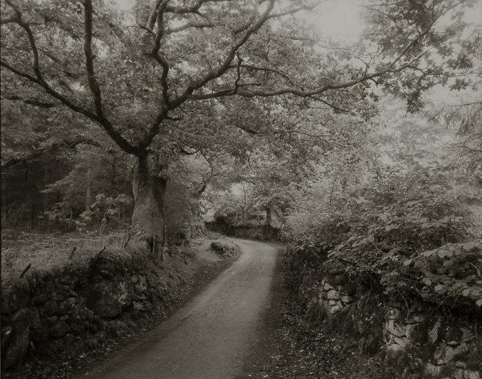 KOICHIRO KURITA,  Mossy Road, Wales,  1990