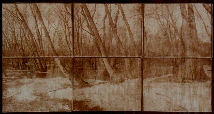 KOICHIRO KURITA,  Sleeping Woods, Concord, Massachusetts,  2014
