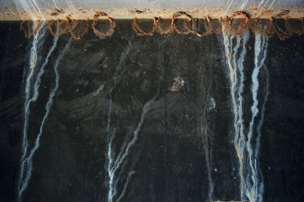 REBECCA NORRIS WEBB,  Broken Swallows' Nests,  2005-2011