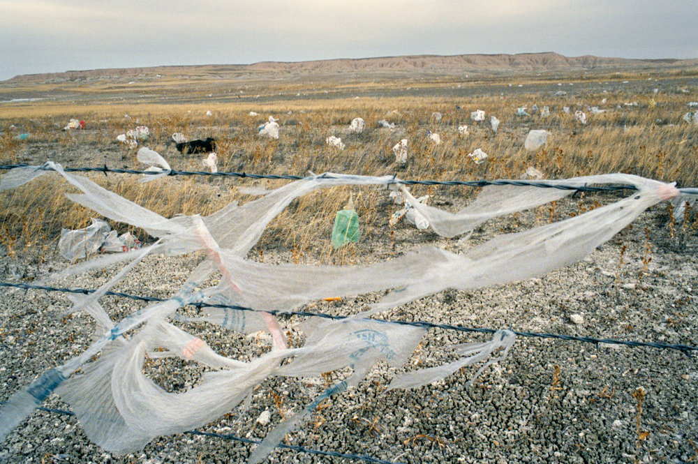 REBECCA NORRIS WEBB,  High Winds,  2005-2011