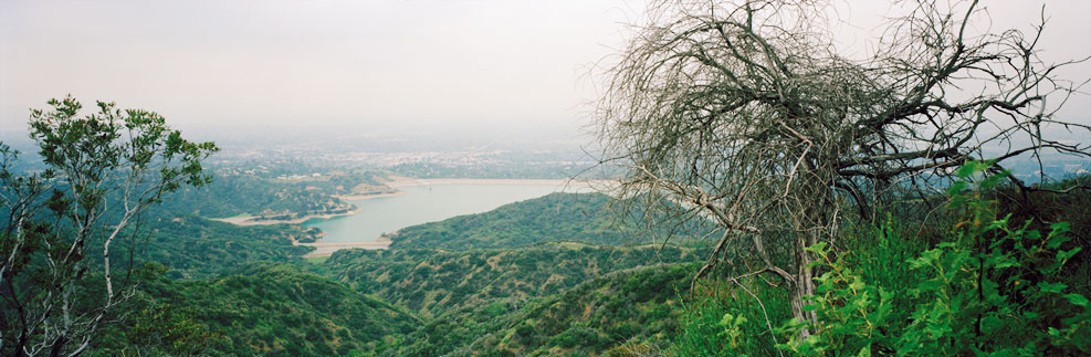 Overlooking Encino Reservoir