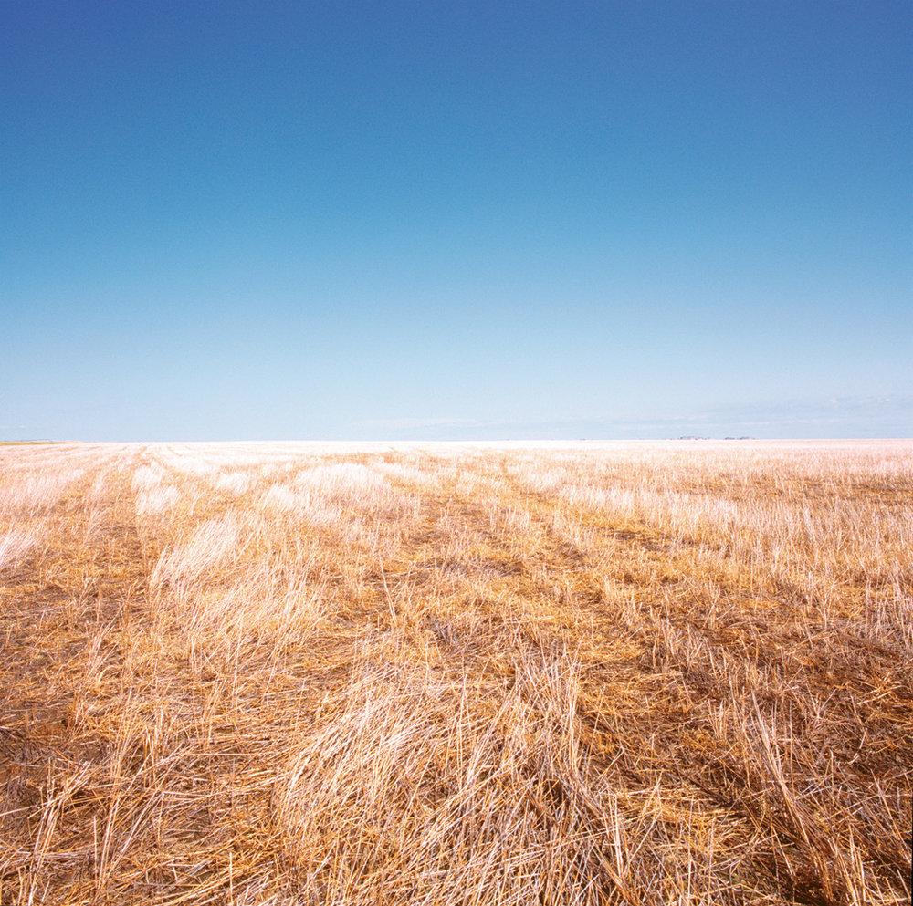 Seenie, South Dakota