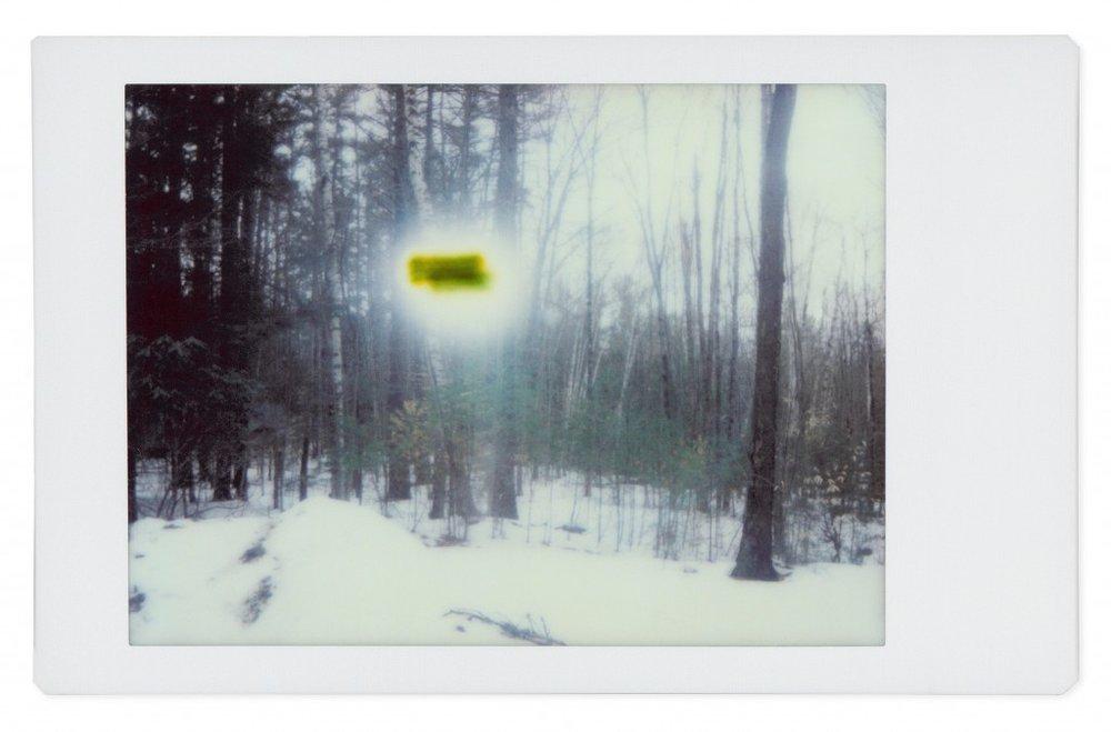Alien  No. 8, 2017
