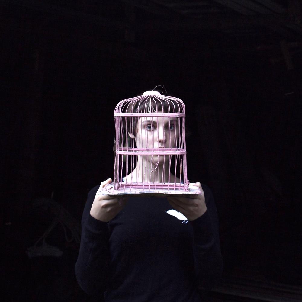 CIG HARVEY,  Sadie & the Birdcage , 2013