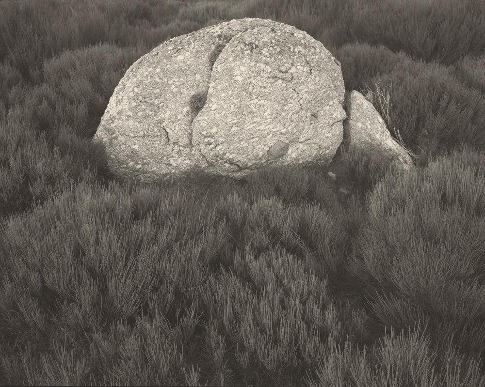 rock on gonet.1.5k.jpg