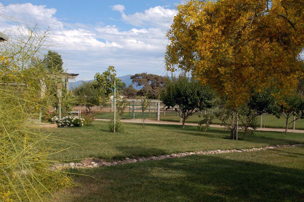 Farmscape2.jpg