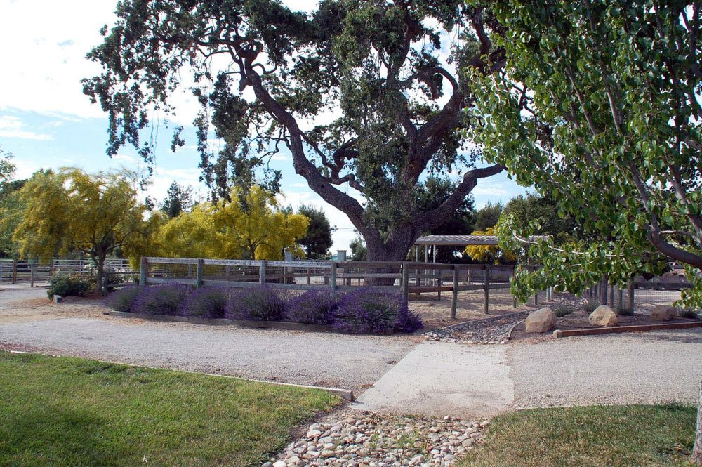 Farmscape3.jpg