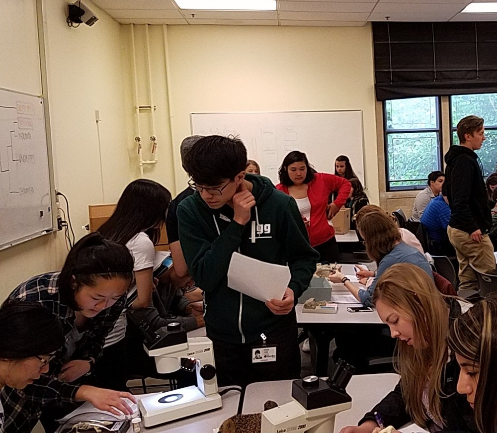 Students and peer TAs working together in the lab.