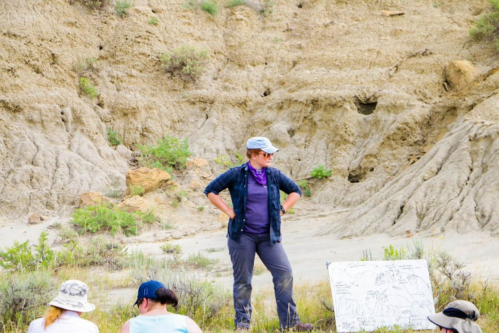 Teaching teachers a lesson on how to draw an outcrop in their field notebooks, DIG 2016.
