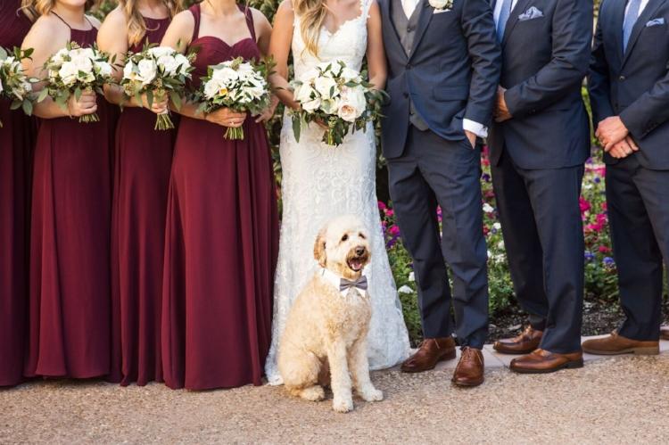 lisa stoner weddings- wedding party with dog - dogs in weddings- orlando weddings - best wedding planner in orlando - wedding party photos- roots photography.jpg