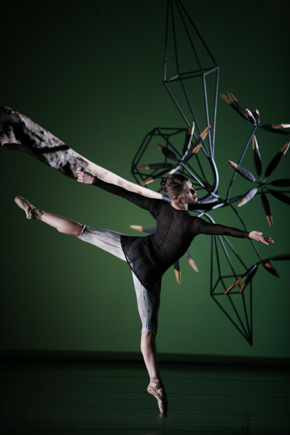 Aspen_SantaFe_Ballet_James_Surls_1.jpg