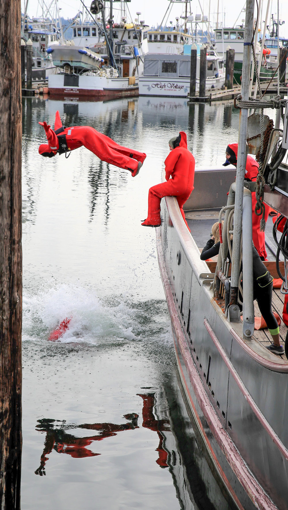 Fisherman dives into Bellingham Bay at the Annual Bellingham SeaFeast