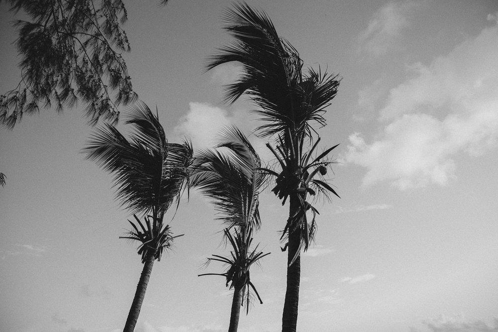 Condado Beach , San Juan, Puerto Rico