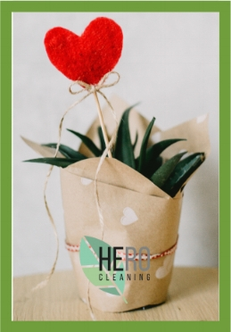 Real Estate House Cleaning Gift Basket