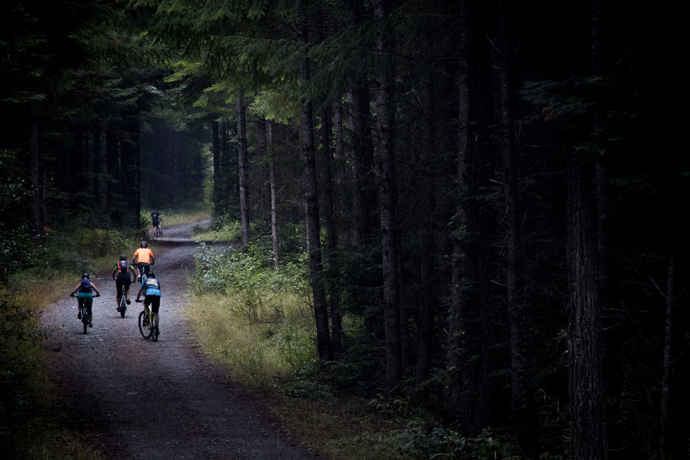 Riders working there way up the service roads in the forest