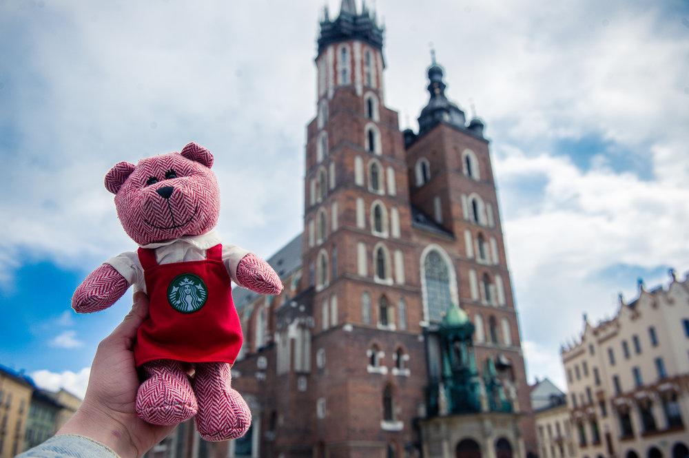 traveling barista bear krakow 2.jpg