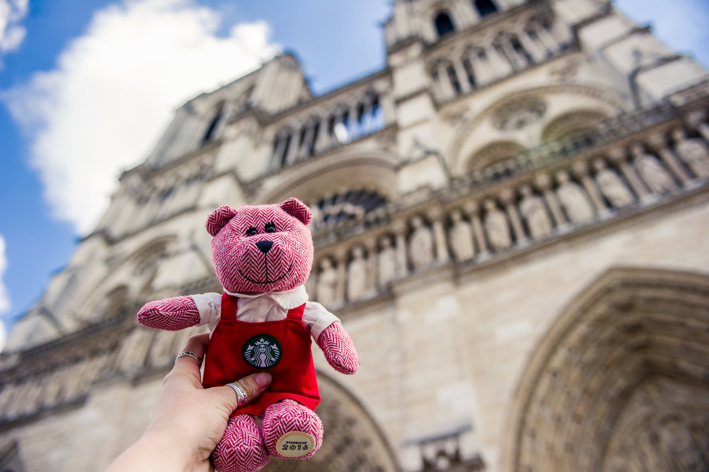 traveling barista bear paris 6.jpg