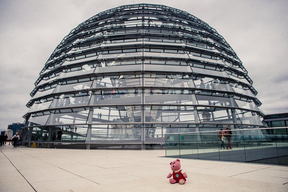 traveling barista bear berlin-3.jpg