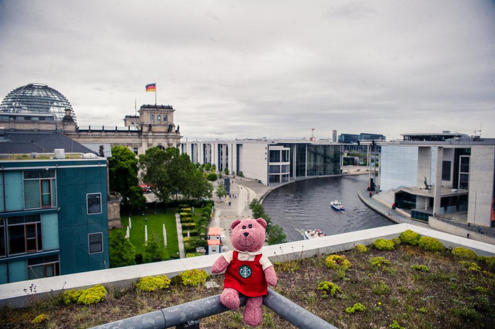 traveling barista bear berlin-4.jpg