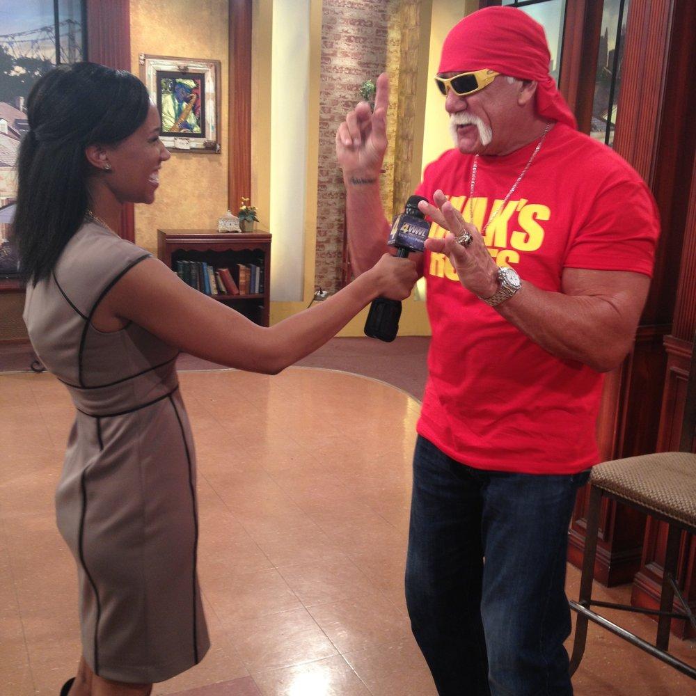 Wrestler Hulk Hogan (2014)