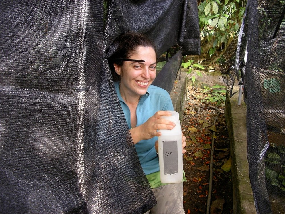 About to start an experiment in Trinidad, winter 2009
