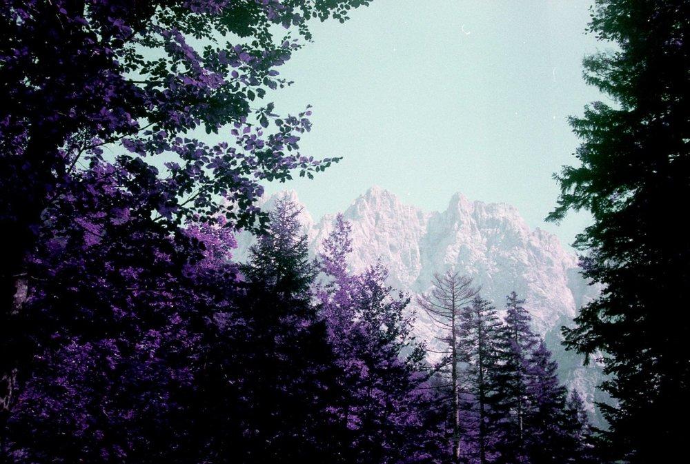 Slovenia077.jpg