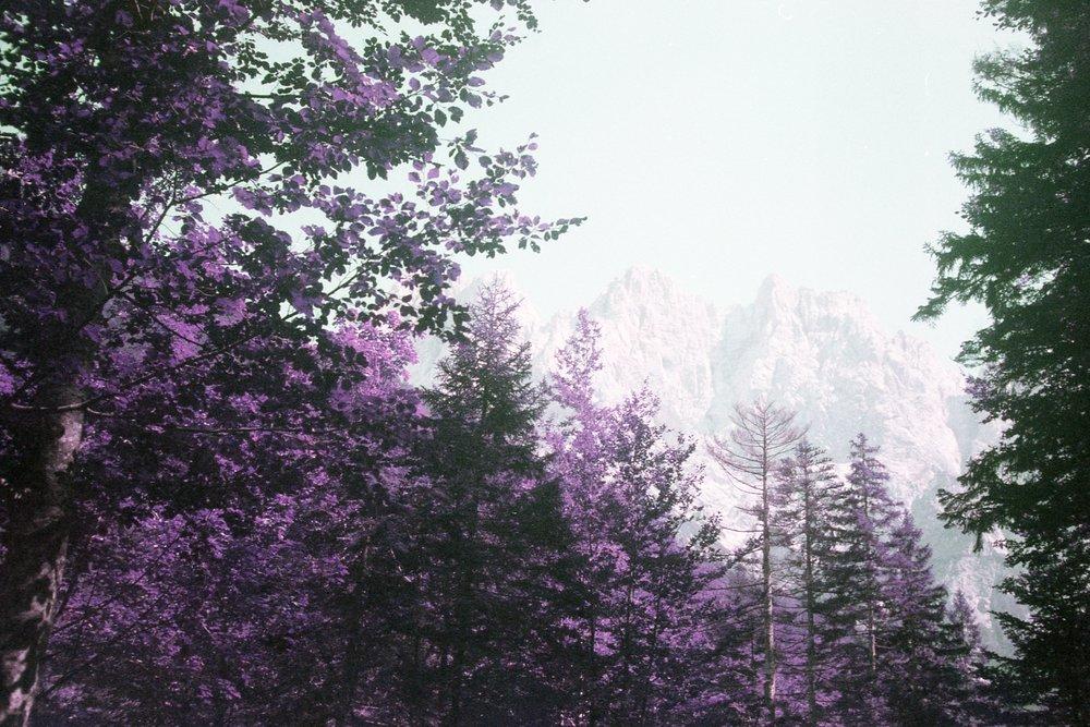 Slovenia086.jpg
