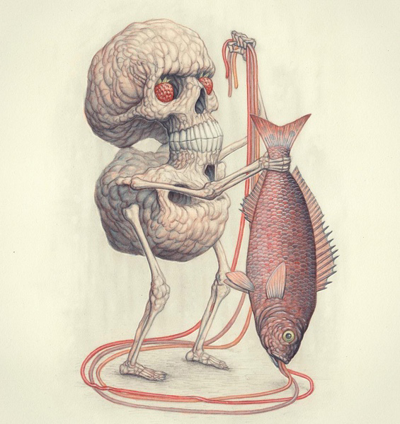 Skull, Man, Fish   by Nick Sheehy
