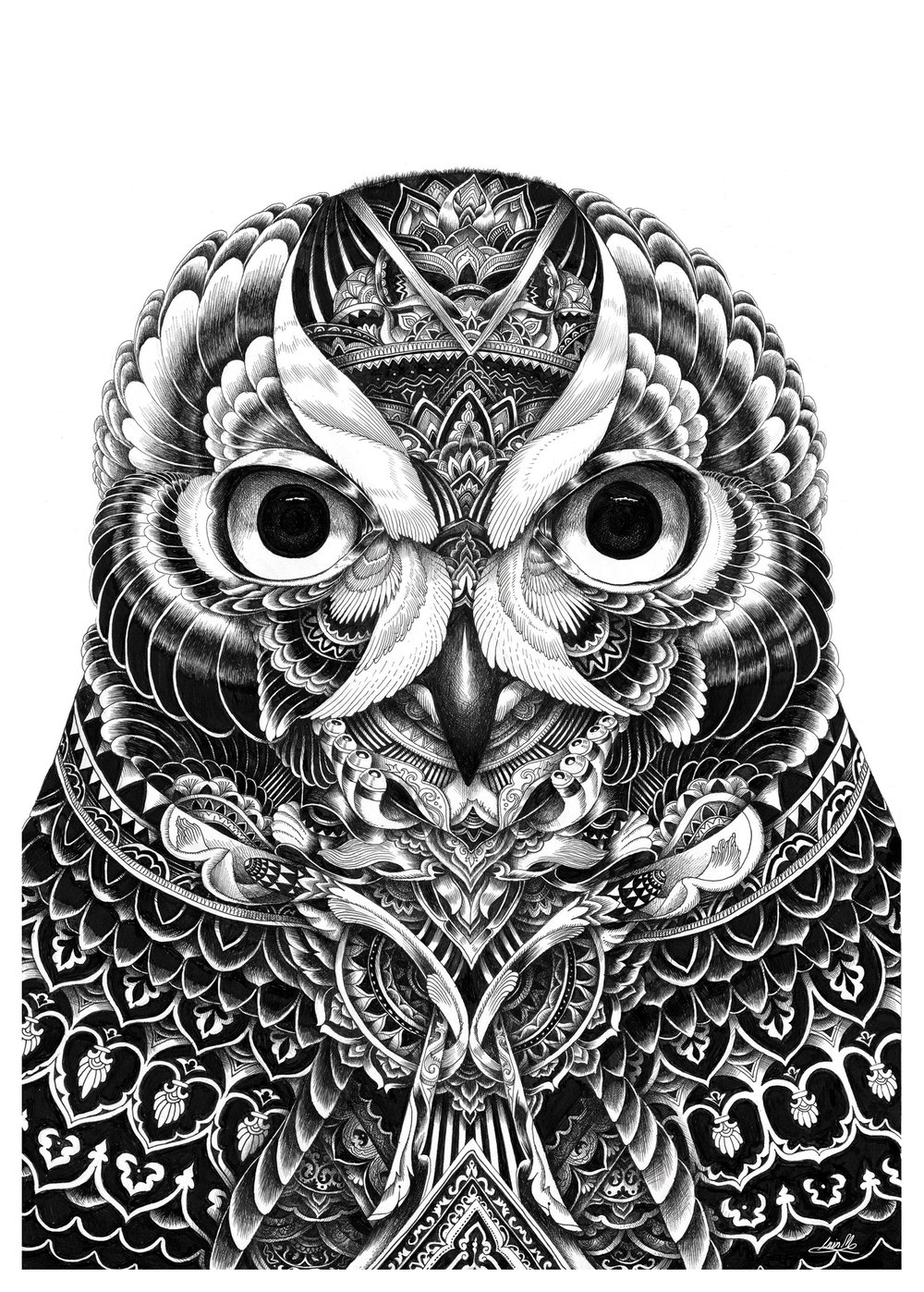 owl postcard.JPG