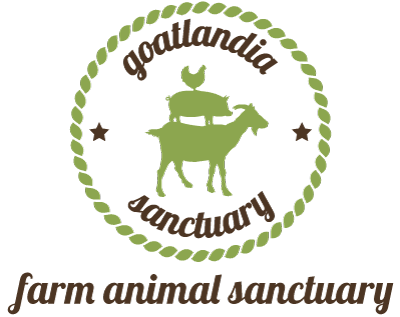 Goatlandia Farm Animal Sanctuary