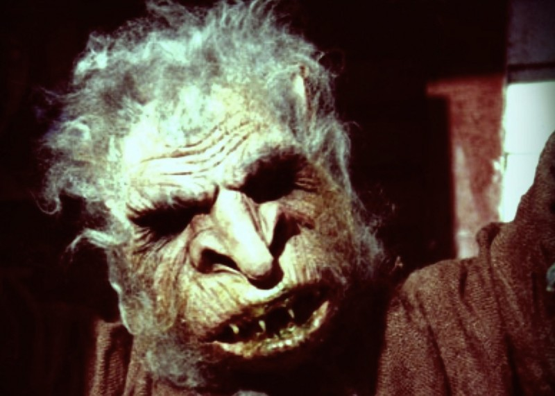 Goblin-from-Troll-2-shoot-800x571
