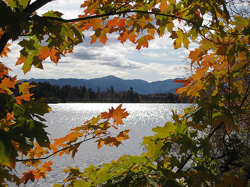 Adirondack Memoir Retreat on Lake ChamplainSept 26 – Sept 30, 2017Led by Elizabeth Cohen & Kate Moses - Focus on your memoir-in-progress at a peaceful Adirondack lakeside lodge set against a backdrop of autumn's turning leaves. Intensive, individual manuscript consultations and feedback in small group workshops.
