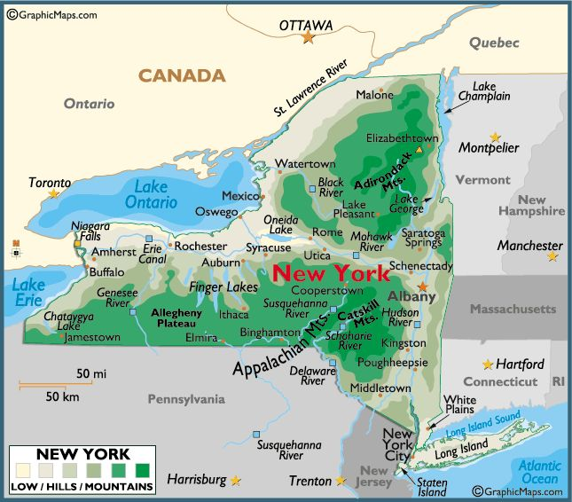 2f0c2882006e0c2877aacf01c041b605--ny-map-map-of-new-york.jpg