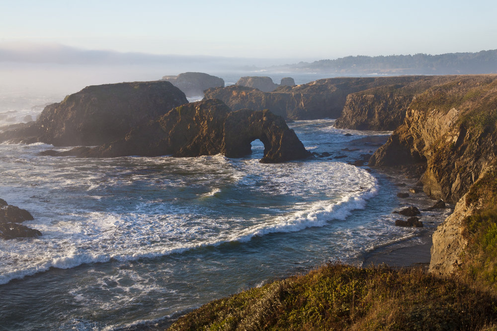 Mendocino_Headlands_IMG_2130.jpg