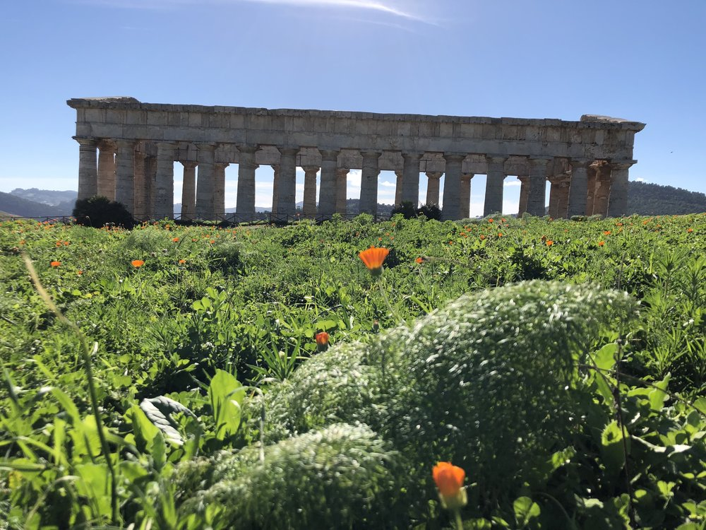 - DETAILS COMING SOON!Sicily Writing Intensive: Write Like a Mother Generative Writing Retreat for Fiction, Creative Nonfiction & Mixed GenreLed by Kate Moses, with Guest Faculty Susan Straight & Reiko RizzutoNovember 2019