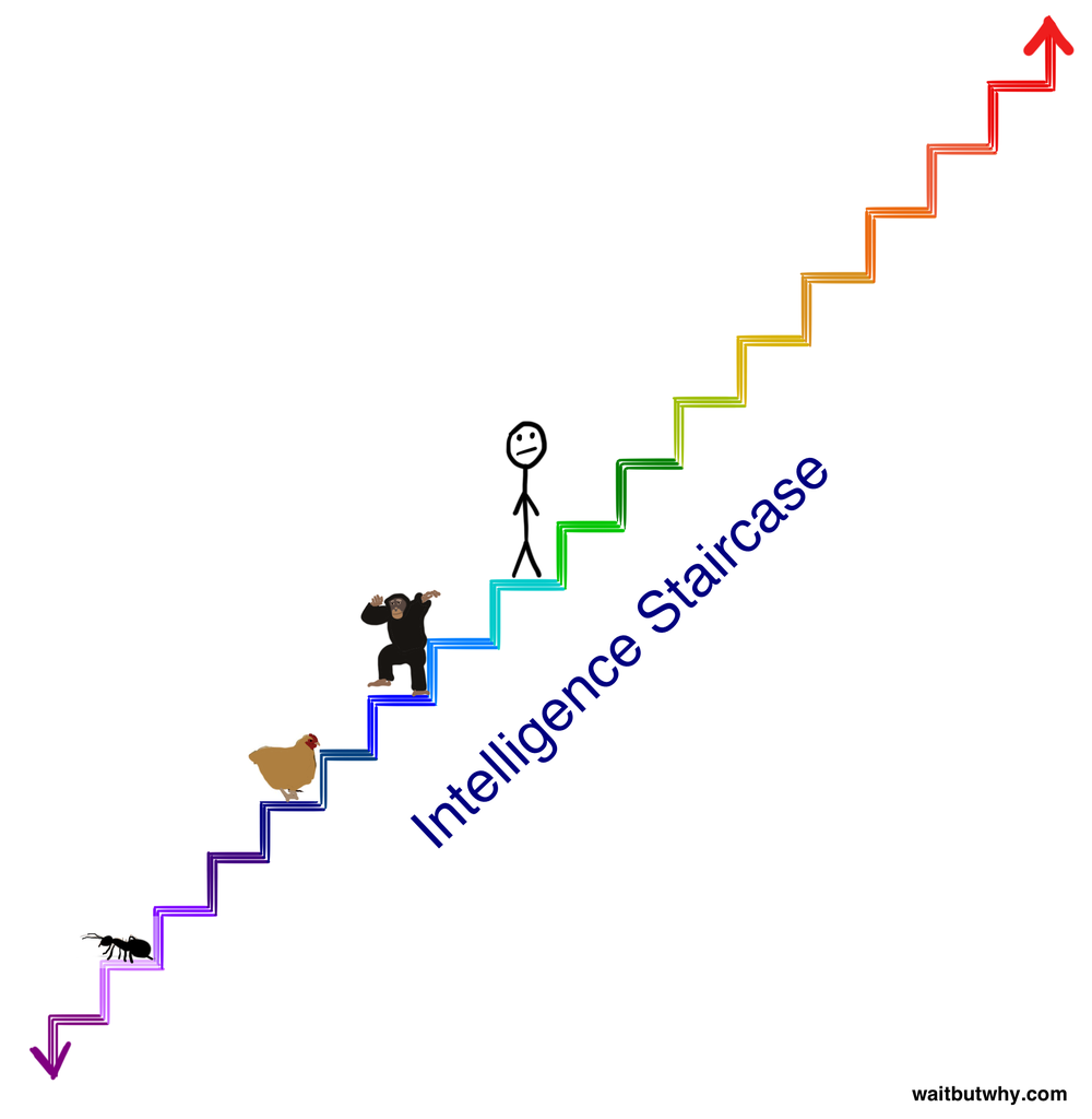 staircase1[1].png